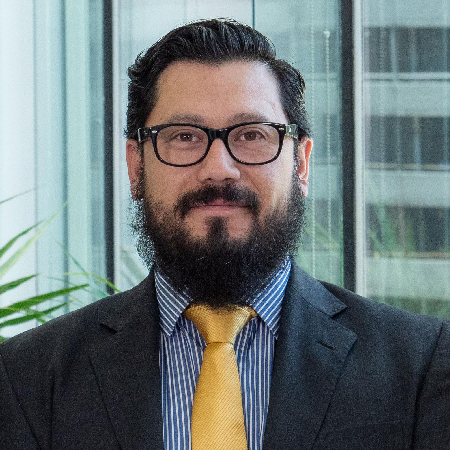Hernán Rauque Ulloa